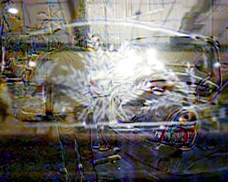 http://david-velasco.com/files/gimgs/th-17_60_dinner_dates_v2.jpg
